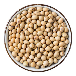soy beans in a round dish