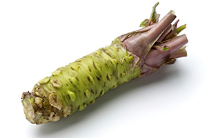 raw wasabi root